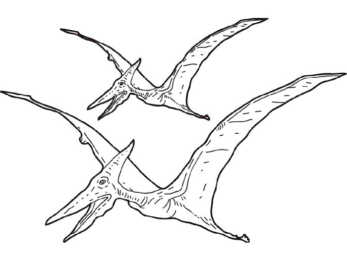 dibujos-colorear-dinosaurios.gif   Mi Maestra de Primaria