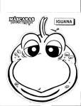 iguana-001